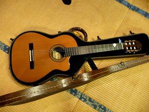 ALちゃんのギター